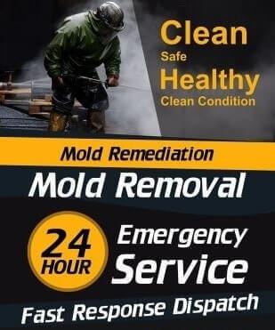 mold inspection Tx City  #lat_long:1# #lat_long:2#